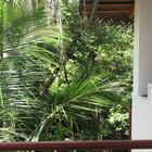 UNAWATUNA Apartments. Photo of hotel. Photo #61