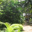 UNAWATUNA Apartments. Photo of hotel. Photo #60